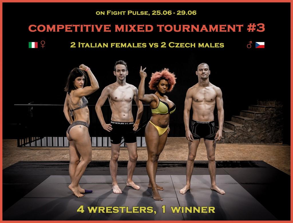 FightPulse-Mixed-Tournament-3-poster